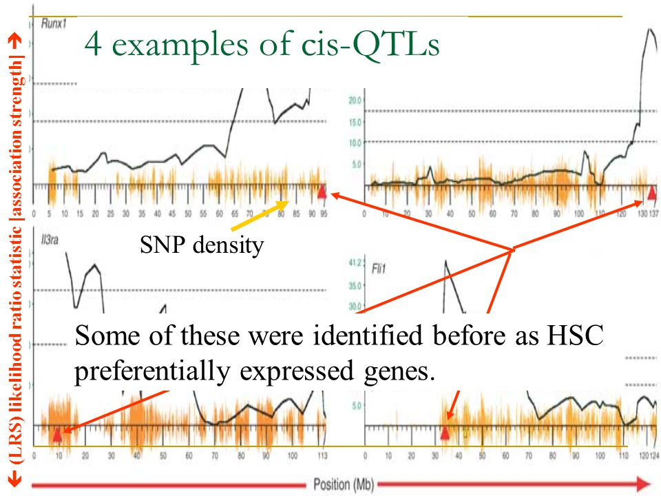 4 examples of cis-QTLs SNP density.  (LRS) likelihood ratio statistic [association strength] 